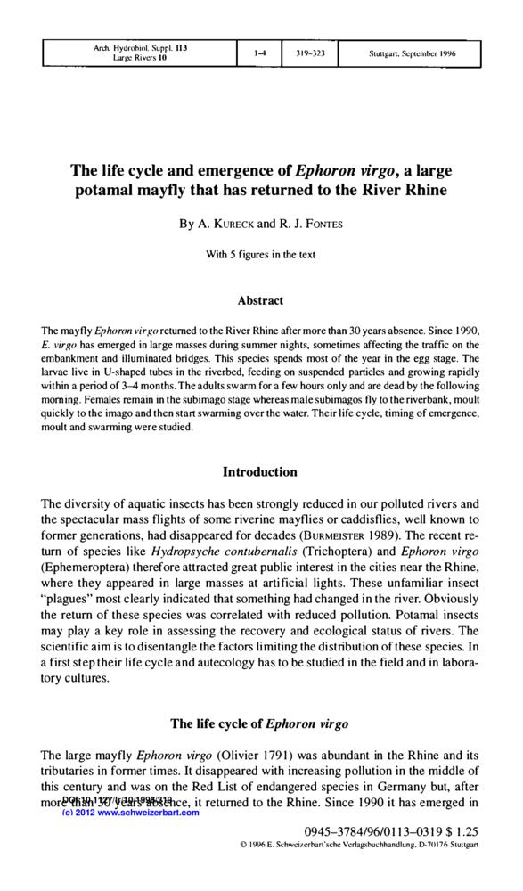 The life cycle and emergence of Ephoron virgo, a large potamal